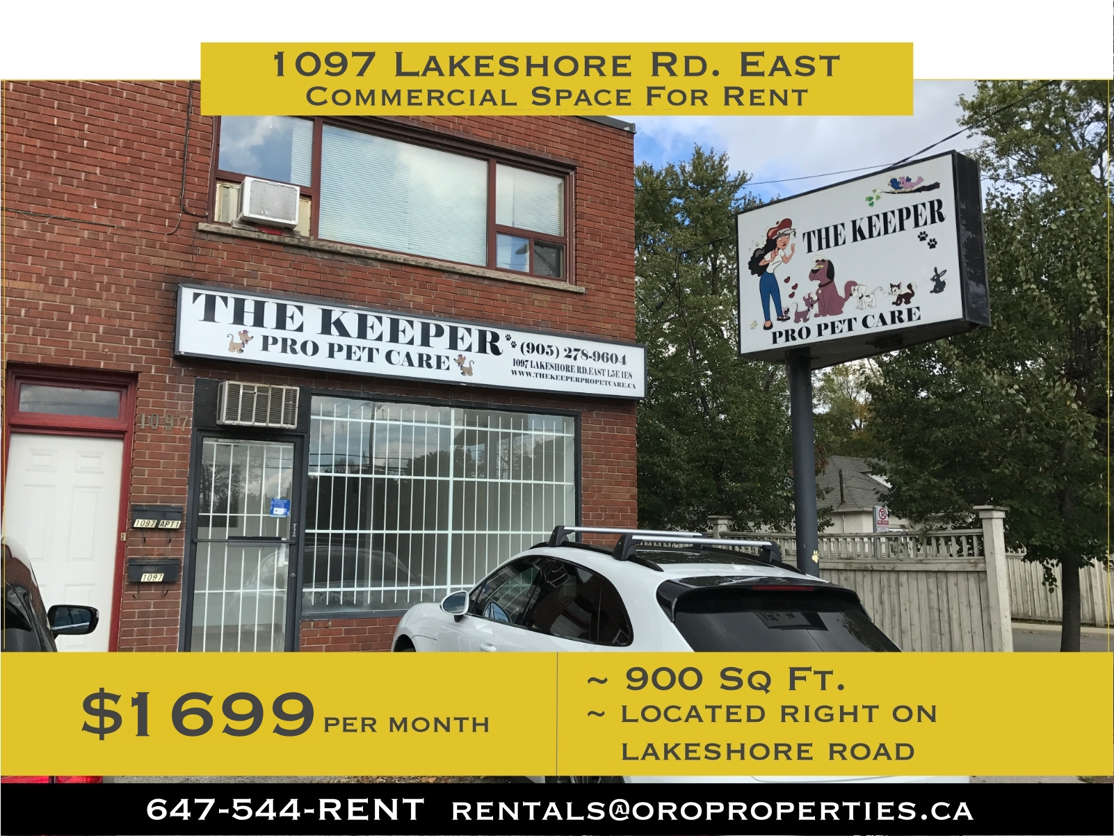 Ready for Business! Amazing Commercial Work Space On Lakeshore Road